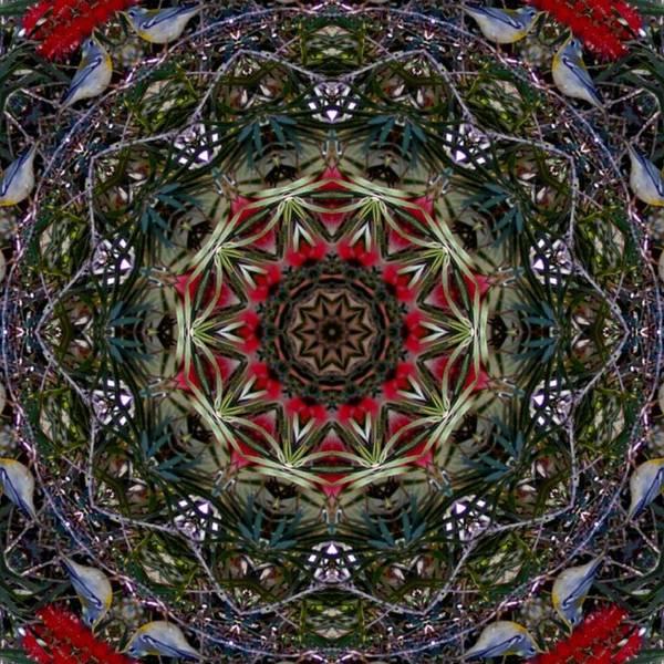 Katrina Digital Art - Bird In Red Tree by Katrina Johns