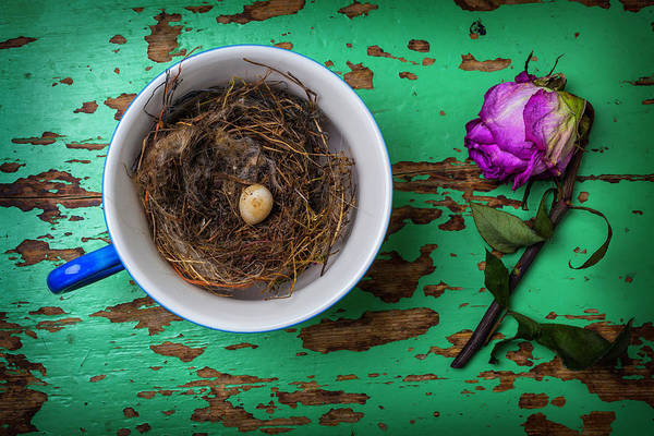 Birds Eggs Photograph - Bird Nest And Weathered Rose by Garry Gay