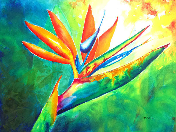Painting - Bird Of Paradise Flower - Intense Watercolor by Carlin Blahnik CarlinArtWatercolor