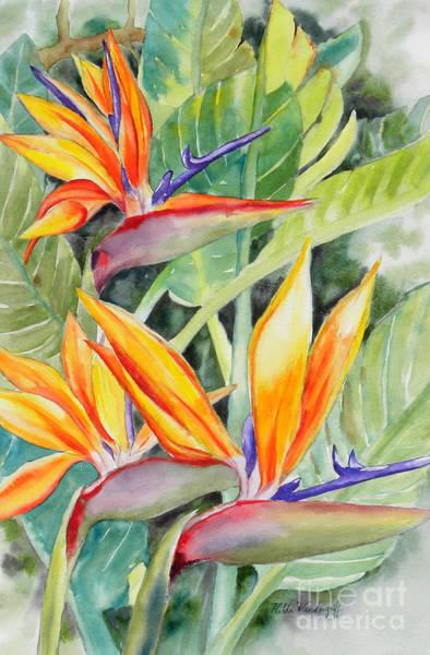 Painting - Bird Of Paradise Flowers by Hilda Vandergriff