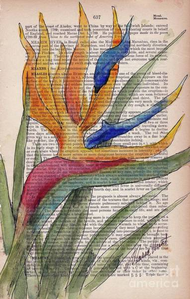 Wall Art - Painting - Bird Of Paradise I by Maria Hunt
