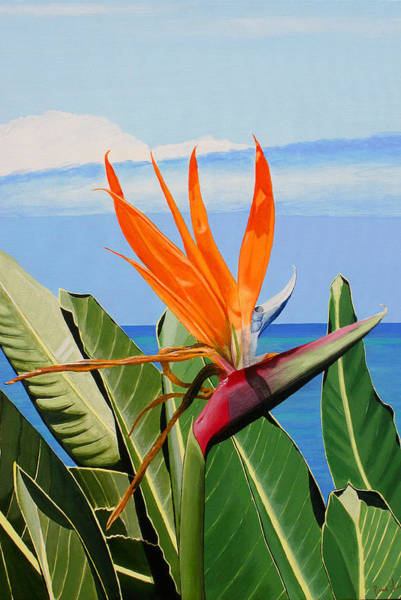 Painting - Bird Of Paradise by Pierre Leclerc Photography