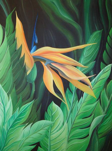 Painting - Bird Of Paradise by William Love