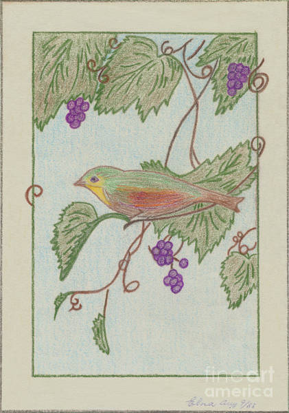 Drawing - Bird On A Vine V2 by Donna L Munro