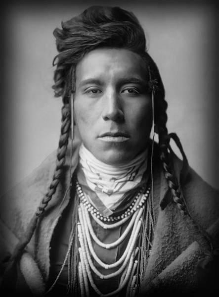 Wall Art - Photograph - Bird On High Land - Crow Tribe - Montana  1908 by Daniel Hagerman