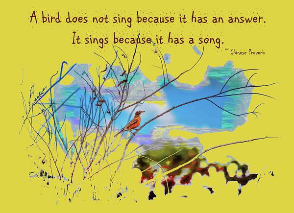 Photograph - Bird Song by John M Bailey