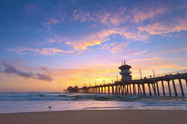 Huntington Beach Pier Photograph - Bird Watching Sunset by Brian Knott Photography