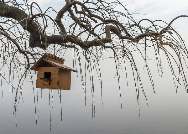 Photograph - Birdhouse In Winter by Alexandre Rotenberg