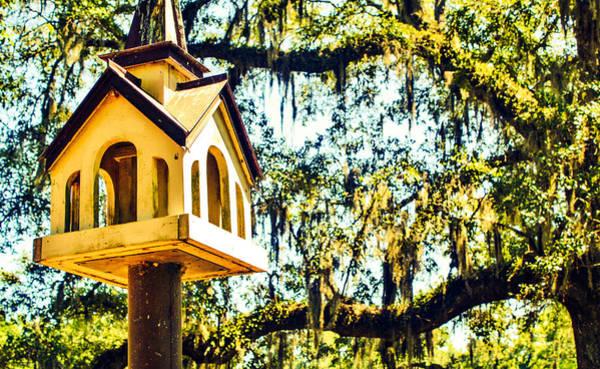 Photograph - Birdhouse by Stacey Rosebrock
