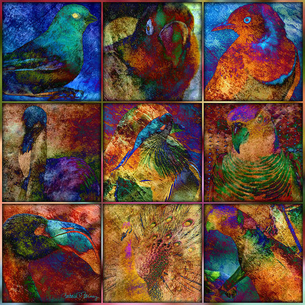 Digital Art - Birds by Barbara Berney