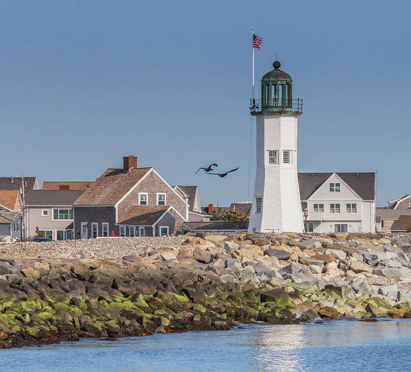 Photograph - Birds Flying By Scituate Lighthouse by Brian MacLean