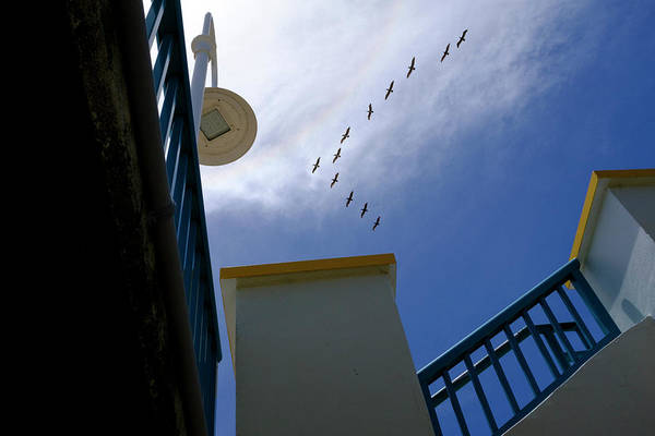 Birds In Formation Over The Boardwalk At Daytona Beach Florida Art Print