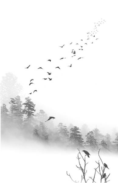 Wall Art - Photograph - Birds In The Mist by Greg Waters