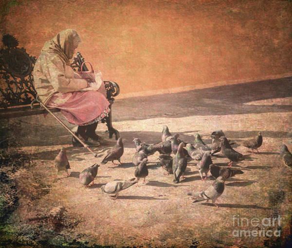 Photograph - Birds Matter Too by Barry Weiss