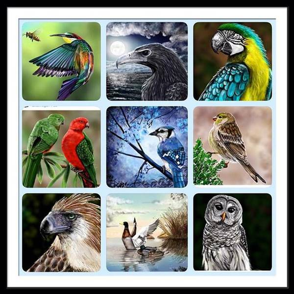 Book Illustration Wall Art - Photograph - #birds .  Here's Some Of My Better by David Burles