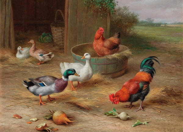 Breeding Painting - Birds Of A Feather by Edgar Hunt