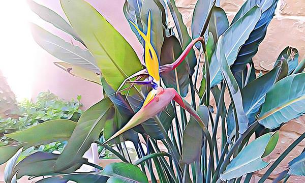 Mixed Media - Birds Of Paradise  by Lucia Sirna