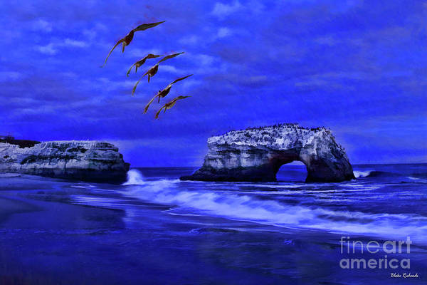 Photograph - Birds Over Natural Bridges by Blake Richards
