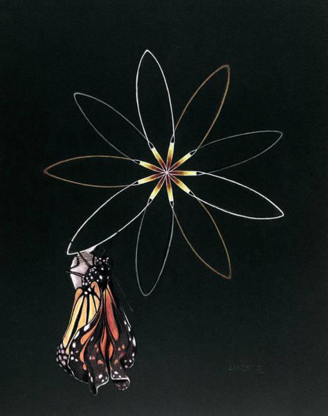 Birth Of Butterfly Art Print