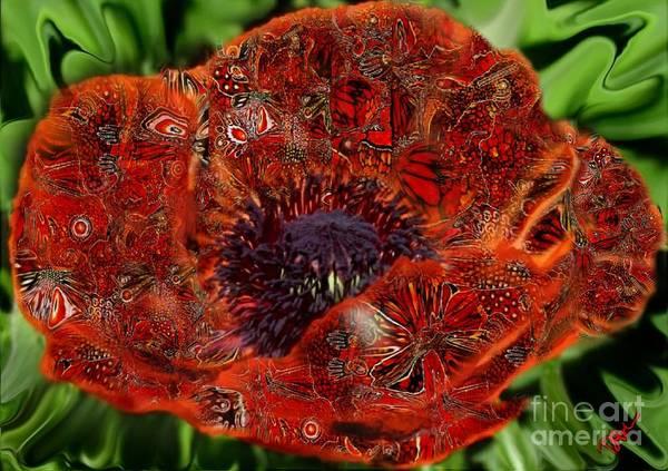 Wild Poppies Digital Art - Birthday Girl by Diane Holman