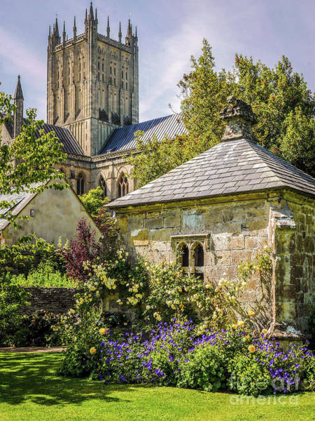 Photograph - Bishops Palace Gardens - Wells England by Lexa Harpell