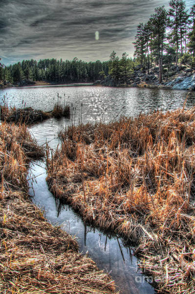 Photograph - Bismark Lake In The Black Hills by Bill Gabbert