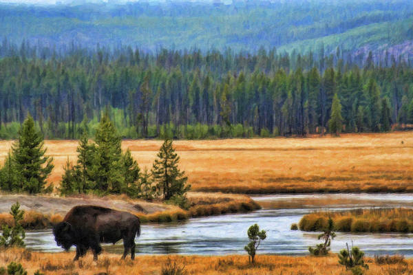 Painting - Bison-dwp987937 by Dean Wittle