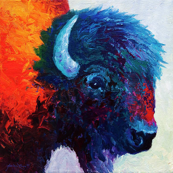 Study Painting - Bison Head Color Study I by Marion Rose