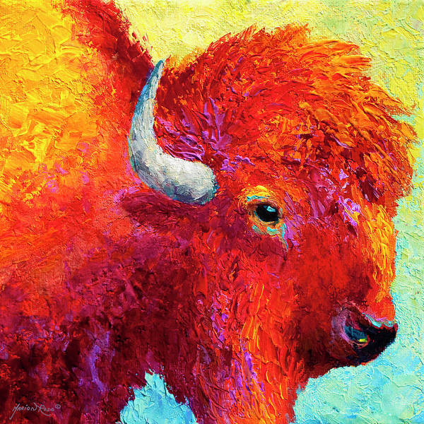 Prairie Painting - Bison Head Color Study Iv by Marion Rose