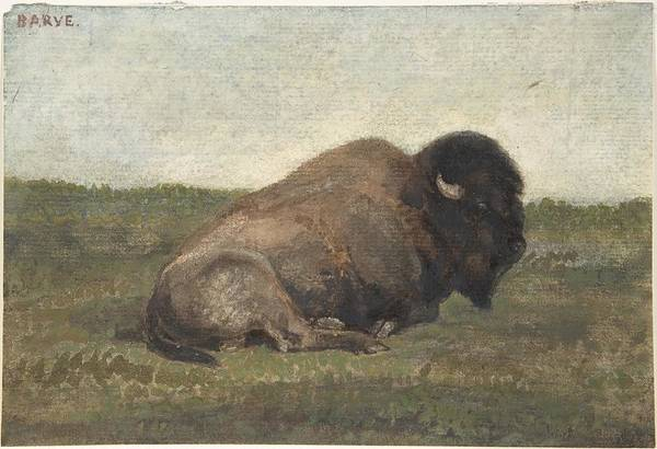 Yak Painting - Bison Lying Down by MotionAge Designs