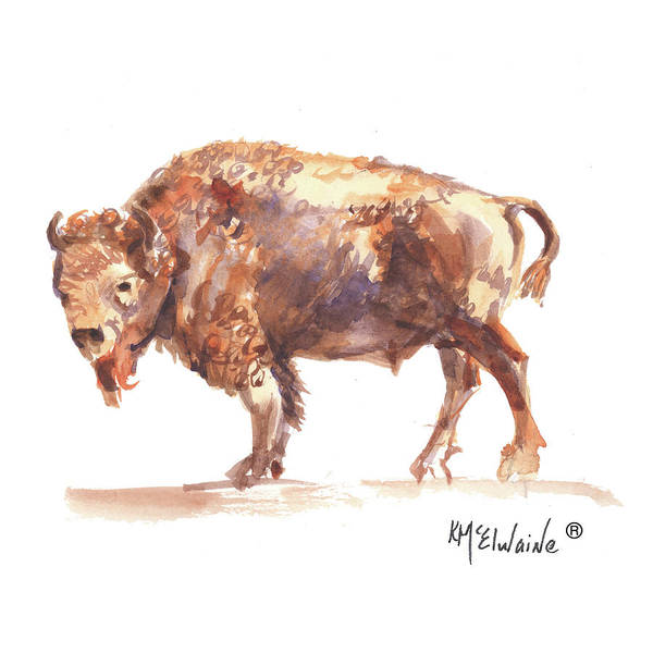 Painting - Summer Bison The Bison Is The United States Of America First Mammal B2016 Watercolor Painting by Kathleen McElwaine