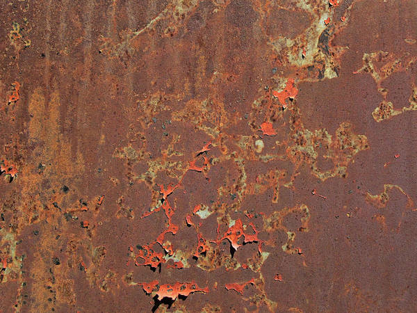 Photograph - Bits Of Red by David King