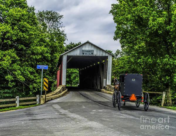 Photograph - Bitzers Covered Bridge by Nick Zelinsky