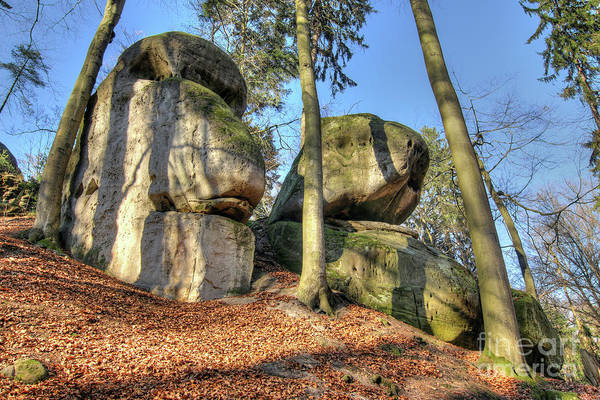 Wall Art - Photograph - Bizarre Boulders In The Woods In The Bohemian Paradise by Michal Boubin