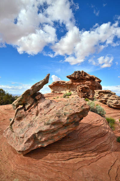 Photograph - Bizarre Rocks by Ray Mathis
