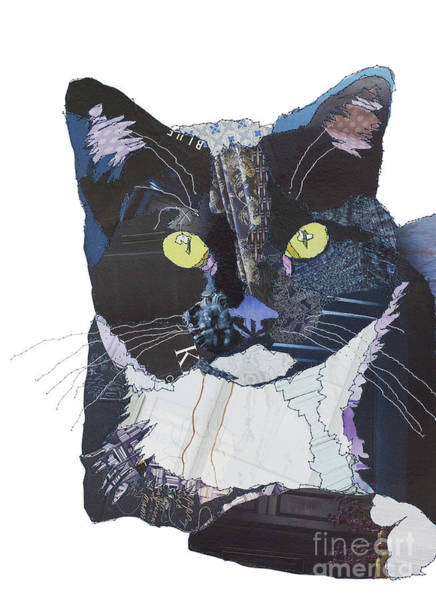 Wall Art - Digital Art - Black And Blue Cat by MGL Meiklejohn Graphics Licensing