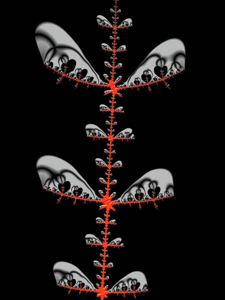 Digital Art - Black And Red Abstract Fractal by Matthias Hauser