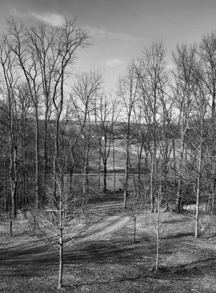 Berlin Ohio Photograph - Black And White Amish Country by Dan Sproul
