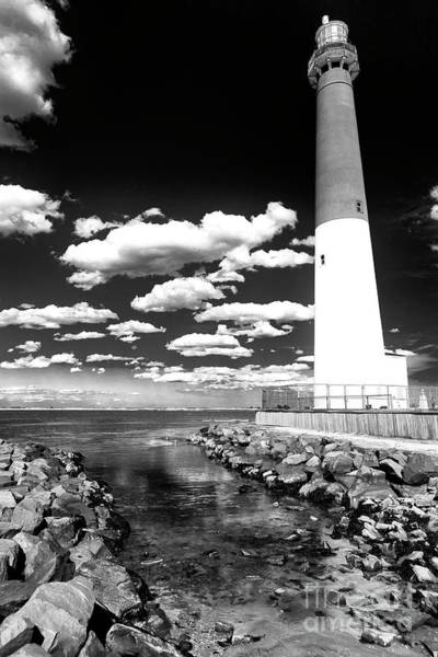 Photograph - Black And White Barnie At Long Beach Island by John Rizzuto