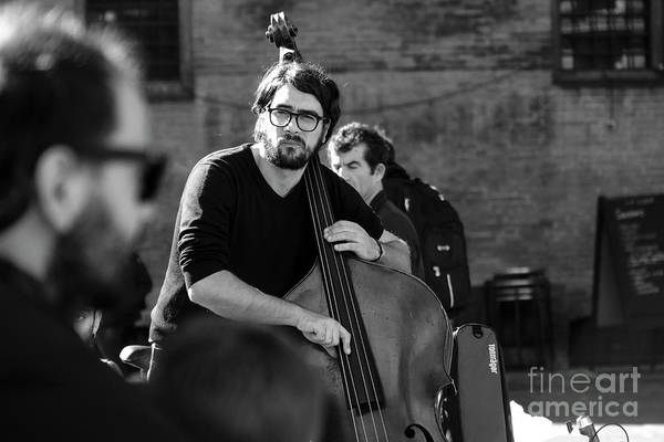 Photograph - Black And White Contrabass Player by Luca Lorenzelli