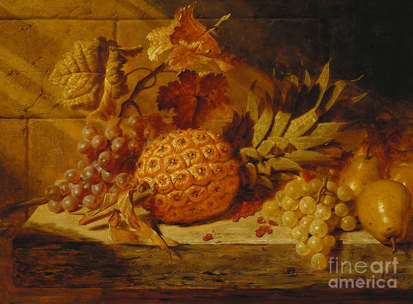 Shadow And Light Painting - Black And White Grapes, Pears, Redcurrants And A Pineapple On A Ledge, 1845  by George Lance