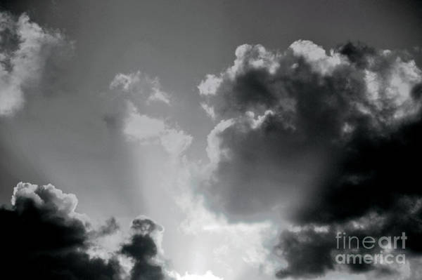 Photograph - Black And White Heavenly Light by Robyn King