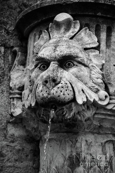 Photograph - Black And White Lion Fountain On Dubrovnik Stradun, Dubrovnik, Croatia by Global Light Photography - Nicole Leffer