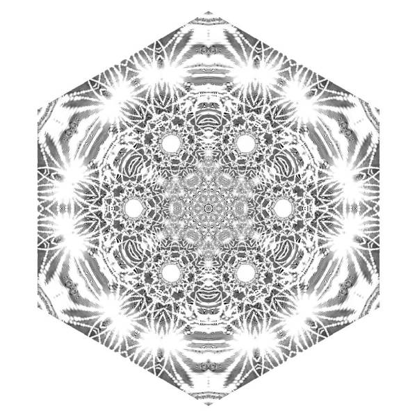 Digital Art - Black And White Mandala 7 by Robert Thalmeier