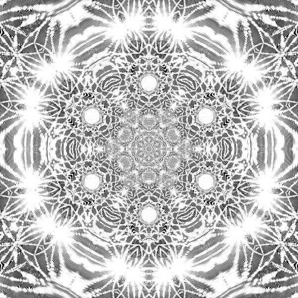 Digital Art - Black And White Mandala 8 by Robert Thalmeier