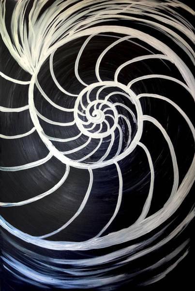 Painting - Black And White Nautilus Spiral by Michelle Pier