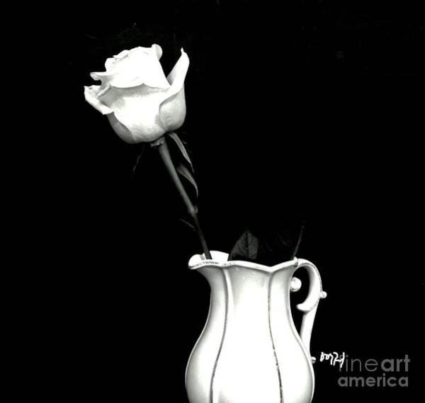 Flowers In A Vase Photograph - Black And White Rose Three by Marsha Heiken
