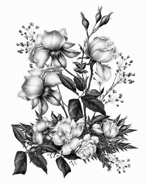 Fleur Digital Art - Black And White Roses On White by Isabella Howard