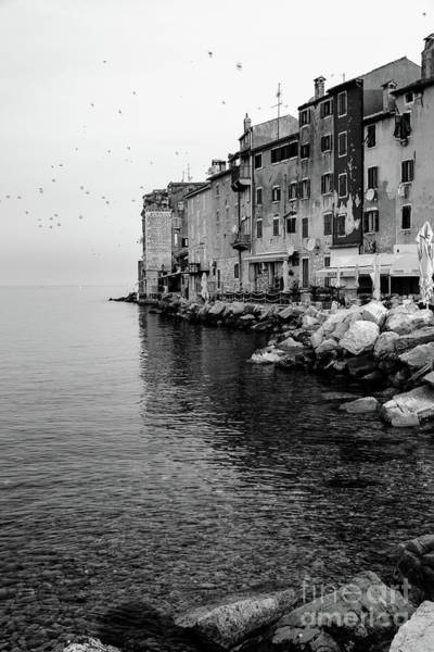 Black And White - Rovinj Venetian Buildings And Adriatic Sea, Istria, Croatia Art Print