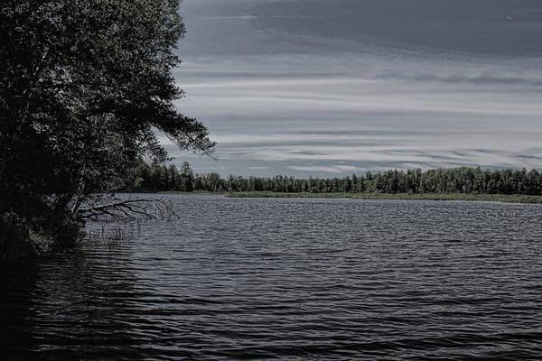 Photograph - Monochrome Tamarack Flowage by Dale Kauzlaric